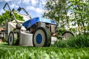 Rasen mähen und pflegen